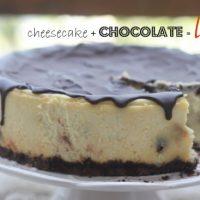 Chocolate Chip Vanilla Bean Cheesecake