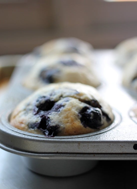 Perfect Blueberry Muffins- Baker Bettie